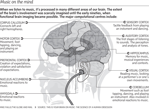How your brain processes music